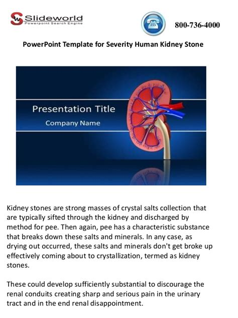 kidney templates for powerpoint human kidney stone powerpoint template human kidney stone