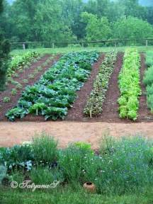 monticello vegetable garden the ultimate kitchen garden beautiful pictures of it here