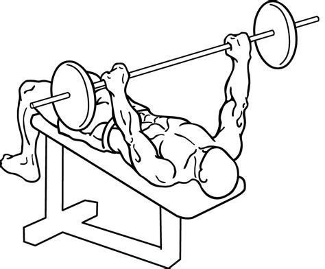 bench press how low what is the best type of bench press your living body