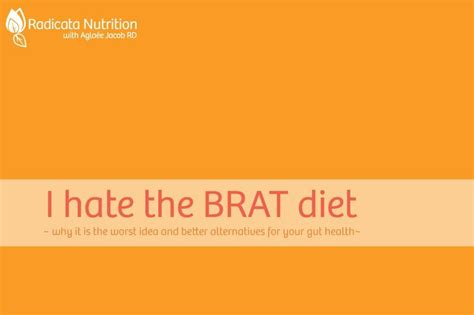 brat diet for dogs 1000 ideas about brat diet on stomach nausea brat food and stomach flu