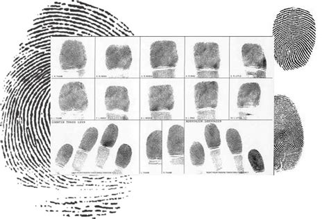 Fingerprinting And Background Check Charleston Sc Official Website Frequently Asked Questions