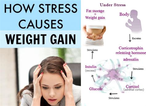 Does Vivical Always Cause Weight Gain | does vivical always cause weight gain how stress causes