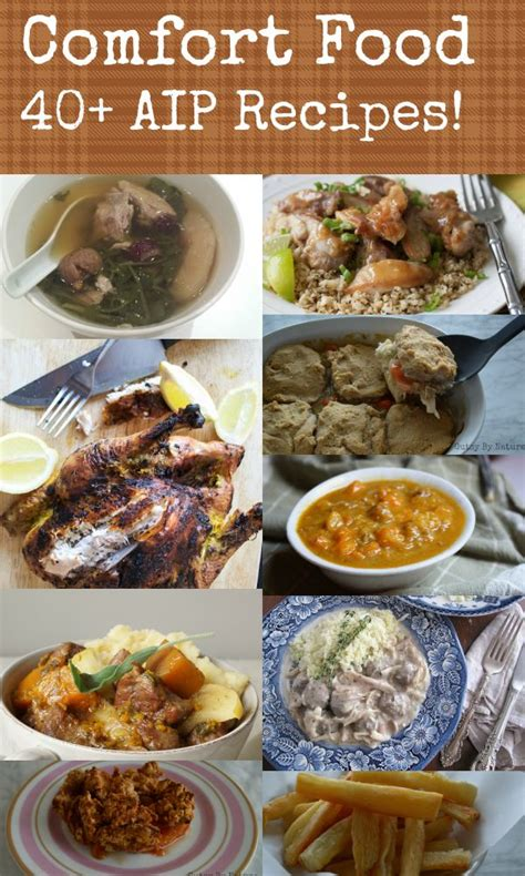 comfort food dc best 25 aip diet ideas on pinterest autoimmune paleo