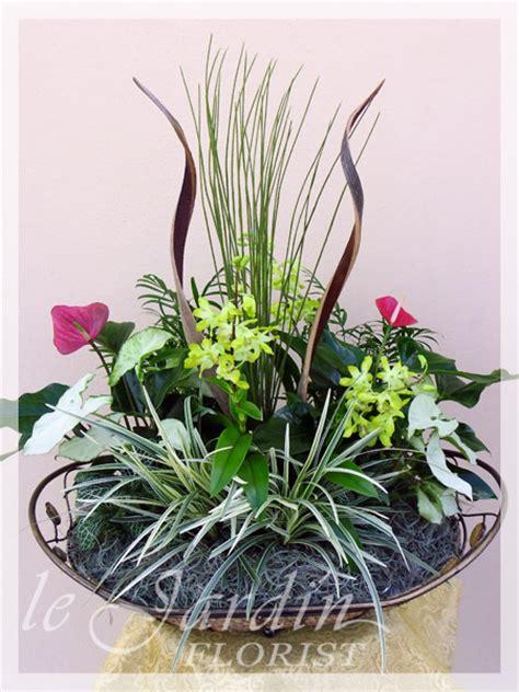 orchid plant arrangements juno beach flowers 561 627 8118