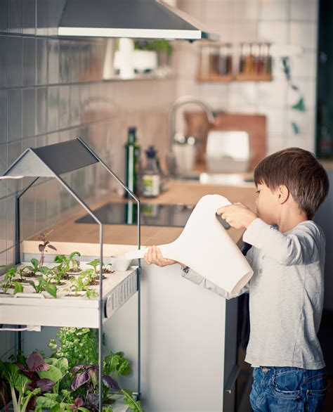 krydda v xer series ikea is selling hydroponic grow kits to grow vegetables