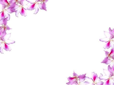 free floral images 26 best images about backgrounds borders and florals on