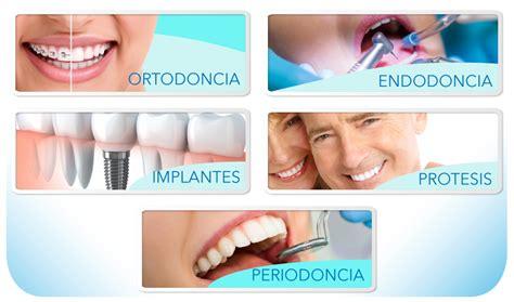 imagenes de cubetas odontologicas isa pavia odontologia
