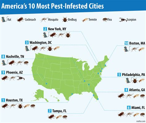 bed bug infestation map america s 10 most pest infested cities realtor com 174