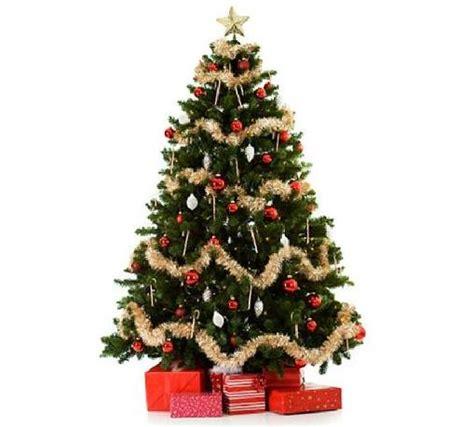 el arbol de navidad su verdadero origen no es como nos la