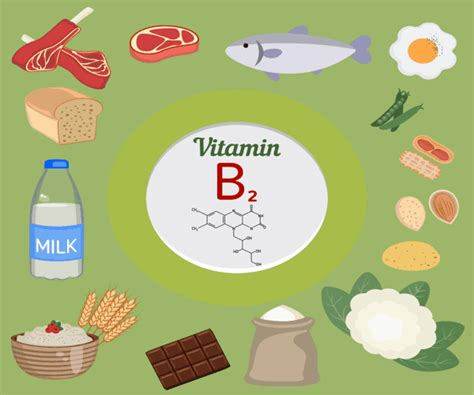 vitamina b en alimentos 10 alimentos m 225 s ricos en vitamina b2 o riboflavina