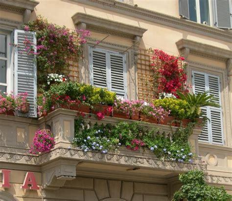 Blauregen Im K Bel 6322 by Kletterpflanzen Auf Balkon Und Terrassen Sichtschutz Und