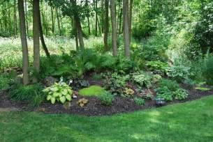 Shaded Backyard Ideas Woodland Garden Maitland Garden Of Hope