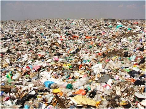 Where Can I Dump A by Paper Or Pollution Eliminating Plastic Bag Waste From
