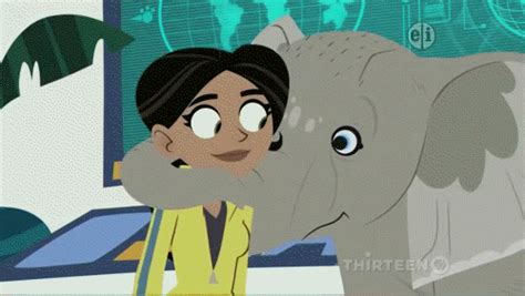 kratts elephant in the room kratts