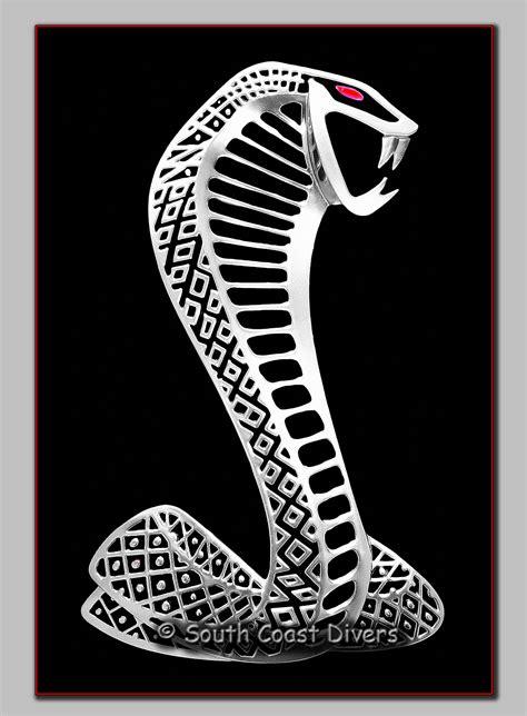 Emblem Cobra Mustang Shelby Kecil Diskon 2011 shelby cobra emblem mustangs