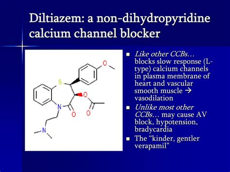 Calcium Channel Blockers Also Search For Dihydropyridine Calcium Related Keywords Dihydropyridine Calcium Keywords