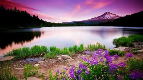 hd nature images   pixelstalknet