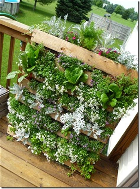 Make A Vertical Garden Diy Vertical Pallet Garden Wooden Pallet Furniture