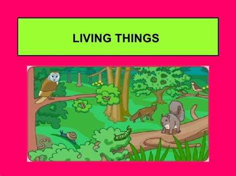 living things non living things living and non living things