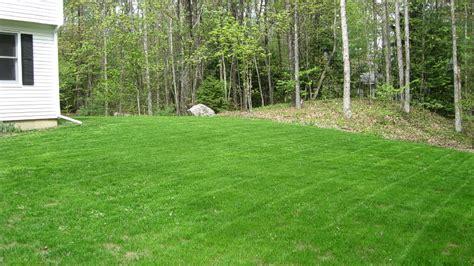 hydroseeding lawn installation in nh