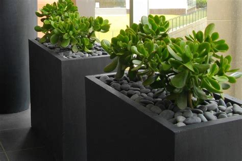 buy a planter balconylite rectangle trough lightweight fibreglass