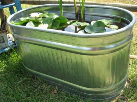 water garden containers for sale container pond area done for now