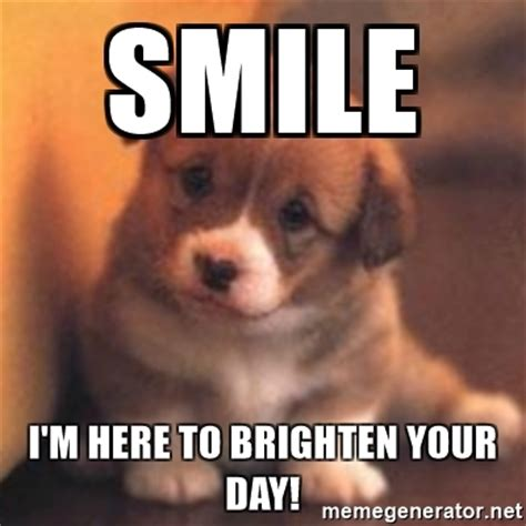 Smile Meme - smile i m here to brighten your day cute puppy meme