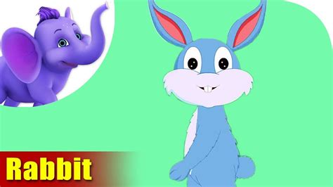The Rhyming Rabbit rabbit rhymes rabbit animal rhymes for children