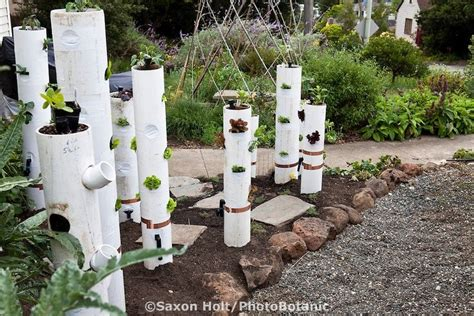 Pin By Rachel Chamelin On Garden Pinterest Pvc Pipe Vegetable Garden