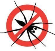 scorpioni in casa come eliminarli disinfestazione ragni impresa di disinfestazione