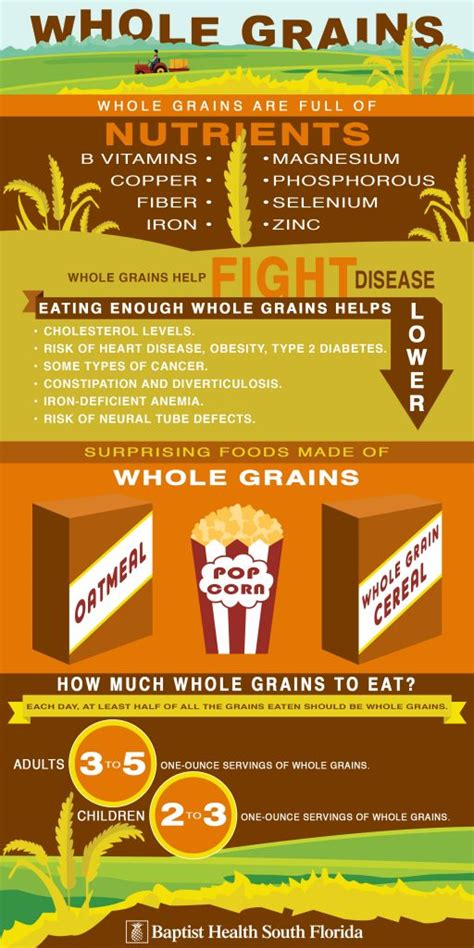 whole grains summit the benefits of whole grains infographic
