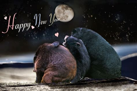 25 creative animals new year wallpaper for 2015