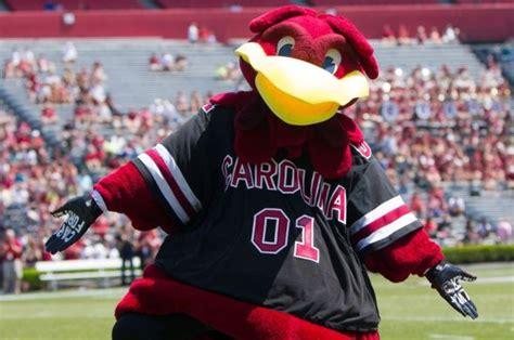 player roster profiles university of south carolina cocky mascot wikipedia