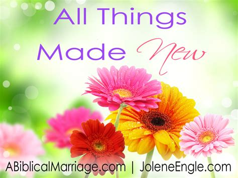 all things made new 0241254000 all things made new a biblical marriage