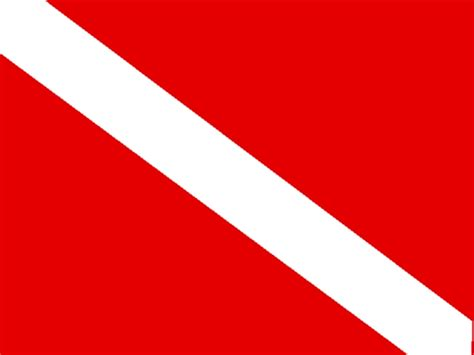 dive flag pin dive flag on