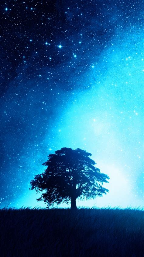 night sky tree iphone wallpaper iphone wallpapers