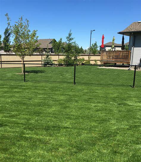 go green landscaping go green landscaping outdoor goods