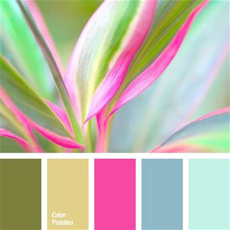 color combination with pink best 25 pink color schemes ideas on color