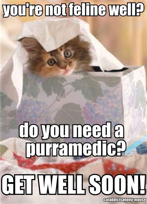 kitty says quot get well soon quot cats pinterest get