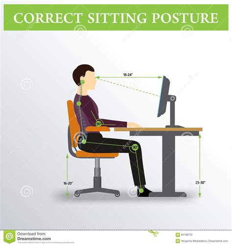 Proper Chair Posture by Ergonomics Correct Sitting Posture Stock Vector Image