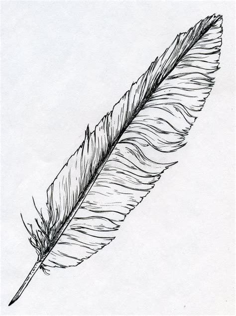 quill sketchbook single feather with ink stock illustration image