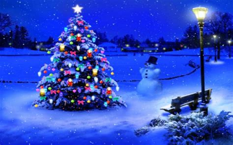 merry in lights 15 tree in lights wallpapers merry