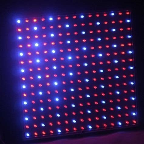 amazoncom ledwholesalers mx bluered  led
