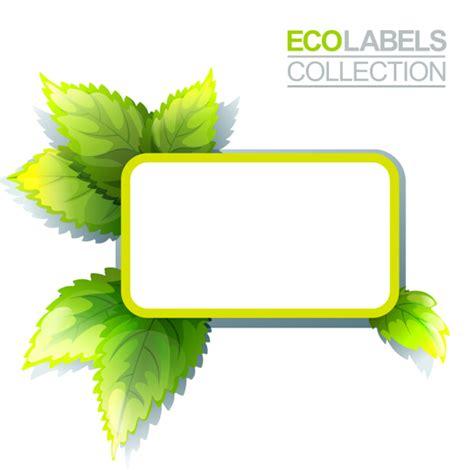 Beschriftung Laubblatt by Plant Leaf Label Clipart Best