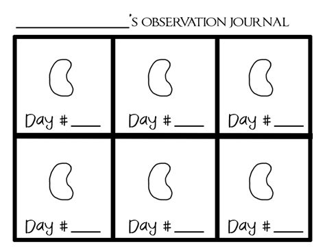 printable science observation journal bean plant observation hurray for science ryckmania