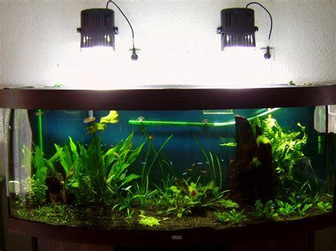 le hqi projet 233 clairage pour aqua 450l juwel page 2 mon premier aquarium
