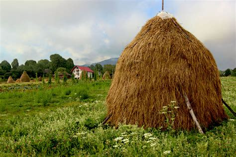 photo haystacks in breb romania