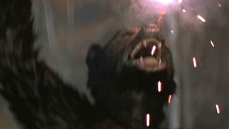 underworld film horror del 1985 the 10 greatest werewolf movies of all time