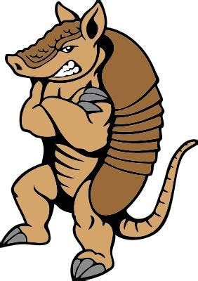 22 best images about armadillo cartoons on pinterest car