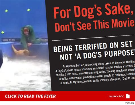 tmz a s purpose peta rolls out protest flyers for a s purpose recruiting protesters tmz